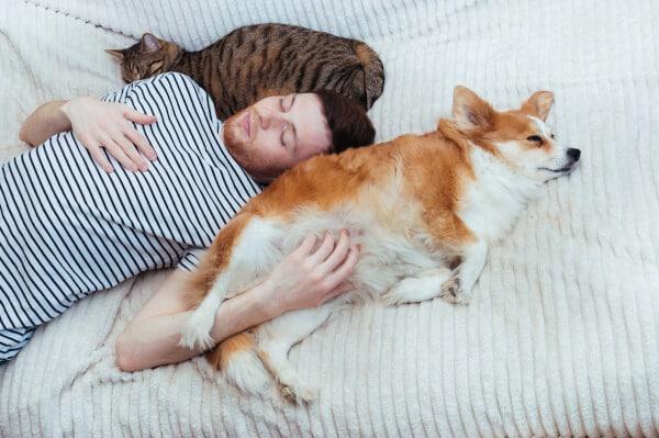 Preventative Care for Pets