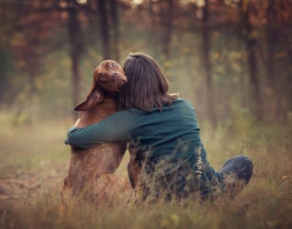 Human Animal Bonding